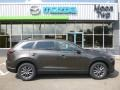 Mazda CX-9 Sport AWD Titanium Flash Mica photo #1