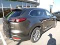 Mazda CX-9 Grand Touring AWD Titanium Flash Mica photo #2