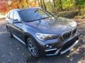 BMW X1 xDrive28i Mineral Grey Metallic photo #6