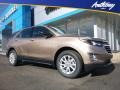 Chevrolet Equinox LS AWD Sandy Ridge Metallic photo #1