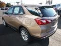 Chevrolet Equinox LS AWD Sandy Ridge Metallic photo #10