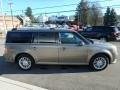 Ford Flex SEL AWD Mineral Gray photo #4