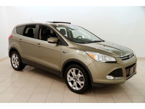 Ginger Ale Metallic 2013 Ford Escape SEL 1.6L EcoBoost 4WD
