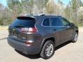 Jeep Cherokee Latitude Plus Granite Crystal Metallic photo #6