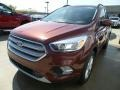 Ford Escape SE Cinnamon Glaze photo #1