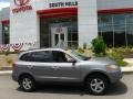 Hyundai Santa Fe GLS 4WD Steel Gray photo #2