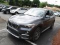 BMW X1 xDrive28i Mineral Grey Metallic photo #7
