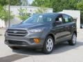 Ford Escape S Magnetic photo #3