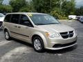 Dodge Grand Caravan SE Cashmere Pearl photo #7