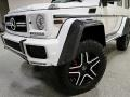 Mercedes-Benz G 550 4x4 Squared Polar White photo #9