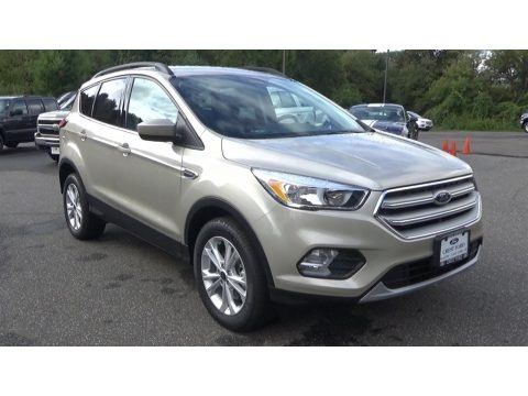 White Gold 2018 Ford Escape SE 4WD