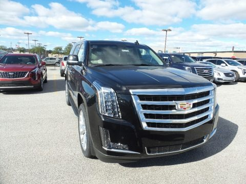 Black Raven 2019 Cadillac Escalade Luxury 4WD