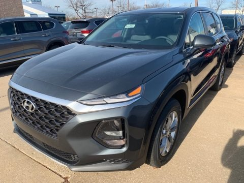 Rainforest 2019 Hyundai Santa Fe SE