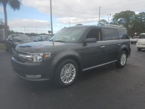 Magnetic 2019 Ford Flex SEL