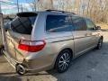 Honda Odyssey Touring Desert Rock Metallic photo #7