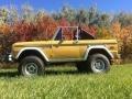 Ford Bronco Sport Wagon Yellow photo #3