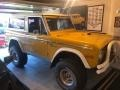 Ford Bronco Sport Wagon Yellow photo #5