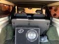 Ford Bronco Sport Wagon Yellow photo #23