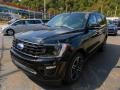 Ford Expedition Limited 4x4 Agate Black photo #7