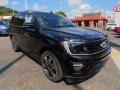 Ford Expedition Limited 4x4 Agate Black photo #9